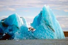 冰山冰岛jokulsarlon 免版税图库摄影