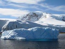 冰山冰 免版税库存照片