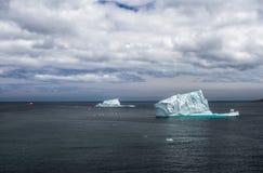 冰山在圣约翰& x27; s,纽芬兰 免版税库存照片