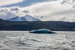 冰山在埃尔卡拉法特阿根廷 库存照片