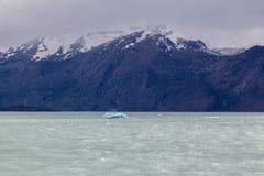 冰山在埃尔卡拉法特阿根廷 免版税库存图片