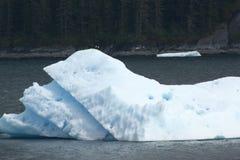 冰山在特雷西胳膊阿拉斯加 免版税库存图片