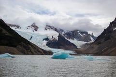 冰山在巴塔哥尼亚的湖漂浮 免版税图库摄影