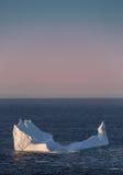 冰山在离纽芬兰与拉布拉多的附近海岸  免版税库存照片