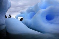 冰山在Antactica 库存照片