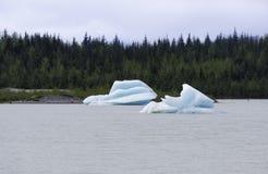 冰山在Mendenhall湖 免版税库存图片