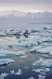 冰岛冰川盐水湖 免版税库存图片