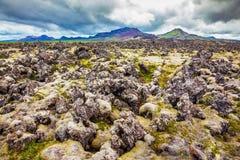 冰岛在夏天 库存图片
