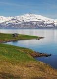 冰岛夏天风景。海湾。 库存图片