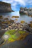 冰岛岩石海岸风景 免版税图库摄影