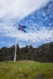 冰岛旗子、草和火山岩在Thingvelir 免版税库存照片