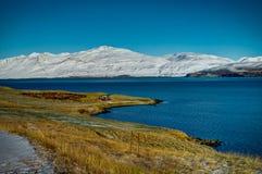 冰岛染黄与积雪的山和A的草原草 免版税库存照片