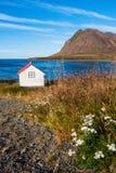 冰岛横向 库存图片
