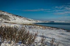 冰岛横跨大西洋的冬天视图往雪加盖了Mo 免版税图库摄影