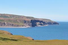 冰岛海岸风景。 免版税库存照片