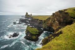冰岛海岸 库存照片