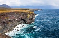 冰岛海岸 免版税库存照片