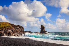 冰岛海岸 免版税库存图片
