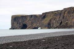 冰岛海岸 库存图片