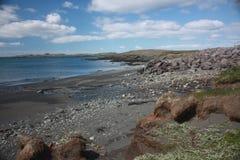 冰岛海滩 库存图片