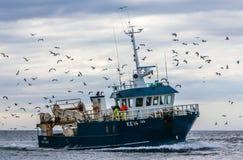 冰岛渔拖网渔船 库存图片