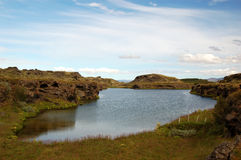 冰岛湖myvatn 库存照片