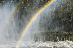 冰岛瀑布在夏天 免版税库存图片