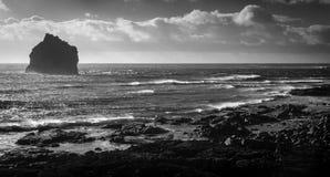 冰岛的南部的海岸 库存图片