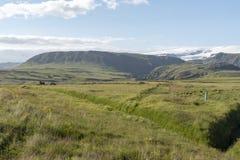 冰岛的南部的草甸 免版税库存照片