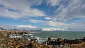 冰岛的海岸 股票录像