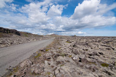 冰岛的熔岩荒野 免版税图库摄影