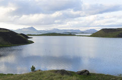 冰岛草甸在夏天 库存照片