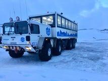 冰岛野兽 图库摄影