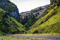 冰岛风景在Vik地区 不尽的空间,绿色和 免版税库存图片