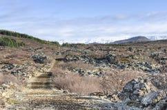 冰岛风景,火山和美丽 免版税图库摄影