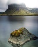 冰岛风景细节 库存照片
