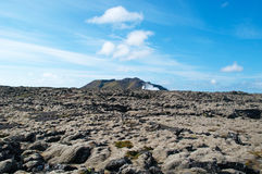 冰岛,北欧 库存照片
