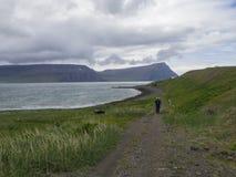 冰岛,西部海湾, Hornstrandir, Latrar, 2018年6月26日:Lonel 免版税库存图片