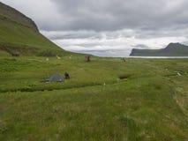 冰岛,西部海湾Hornstrandir, 2018年6月29日:Hornvik露营地有在Hornbjarg峭壁的看法在遥远的自然reserv 免版税库存图片
