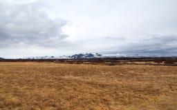 冰岛, 2015年5月:草甸landescape在冰岛 免版税库存照片
