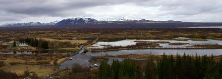 冰岛 与不典型的森林的典型的风景 免版税库存照片