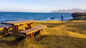 冰岛-休息由岸峭壁 库存照片