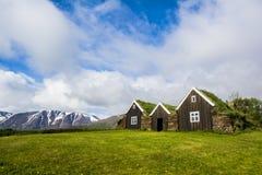 冰岛绿色屋顶房子 库存图片