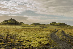 冰岛- Skaftà ¡ reldahraun 库存图片