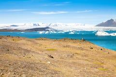 冰岛Jökulsà ¡ rlà ³ n在夏天 库存图片
