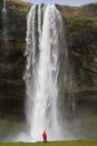 冰岛seljalandsfoss瀑布 免版税库存图片