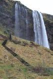 冰岛seljalandsfoss 免版税库存照片
