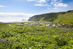 冰岛vik 库存照片