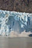冰川产犊 库存照片