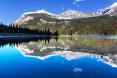 冰川公园 免版税图库摄影
